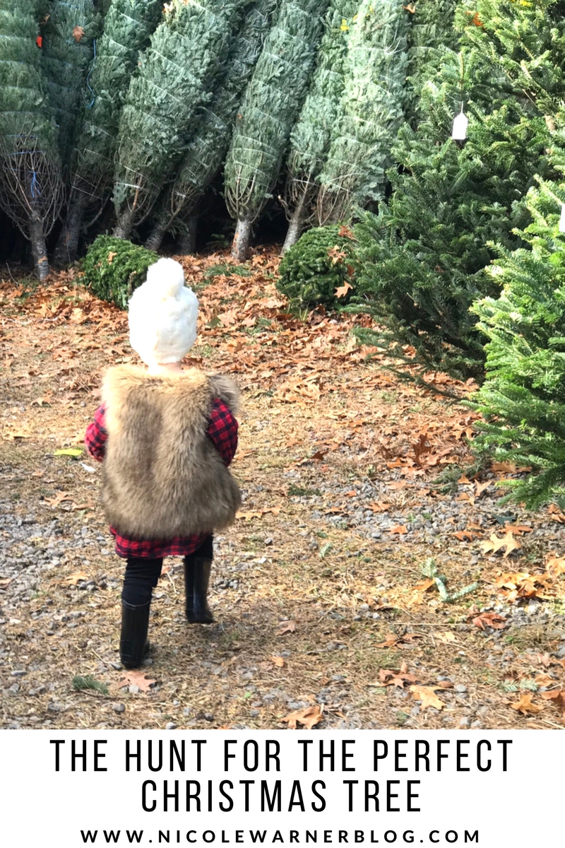The Hunt for the Perfect Christmas Tree
